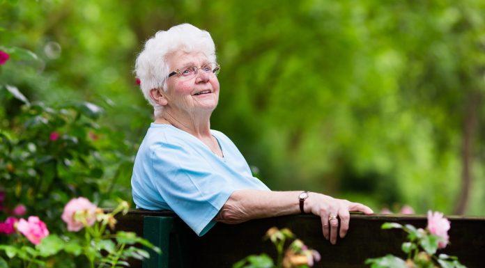 Seniors Lifestyle Magazine Talks Senior Friendly Gardens