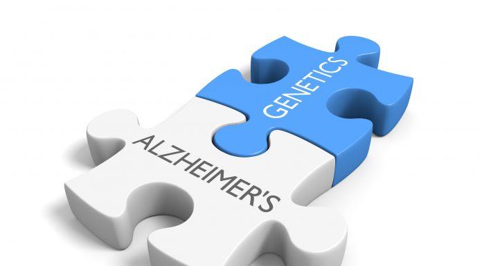 Is Alzheimers hereditary scaled