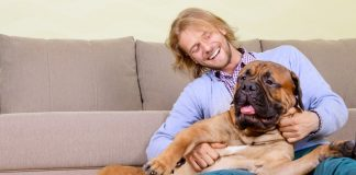 large dog