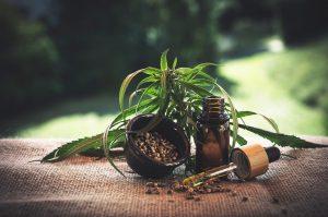 Seniors Lifestyle Magazine Talks To Cannabis Facts