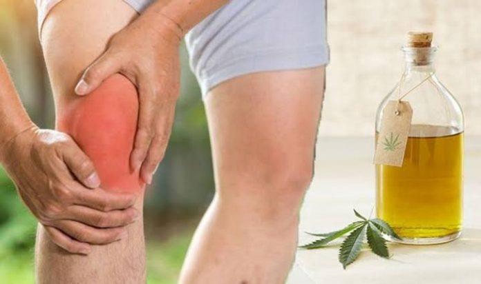 Seniors Lifestyle Magazine Talks To CBD Oil For Arthritis