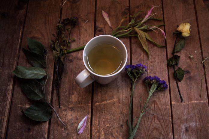 Seniors Lifestyle Magazine Talks to More Reasons To Drink Green Tea