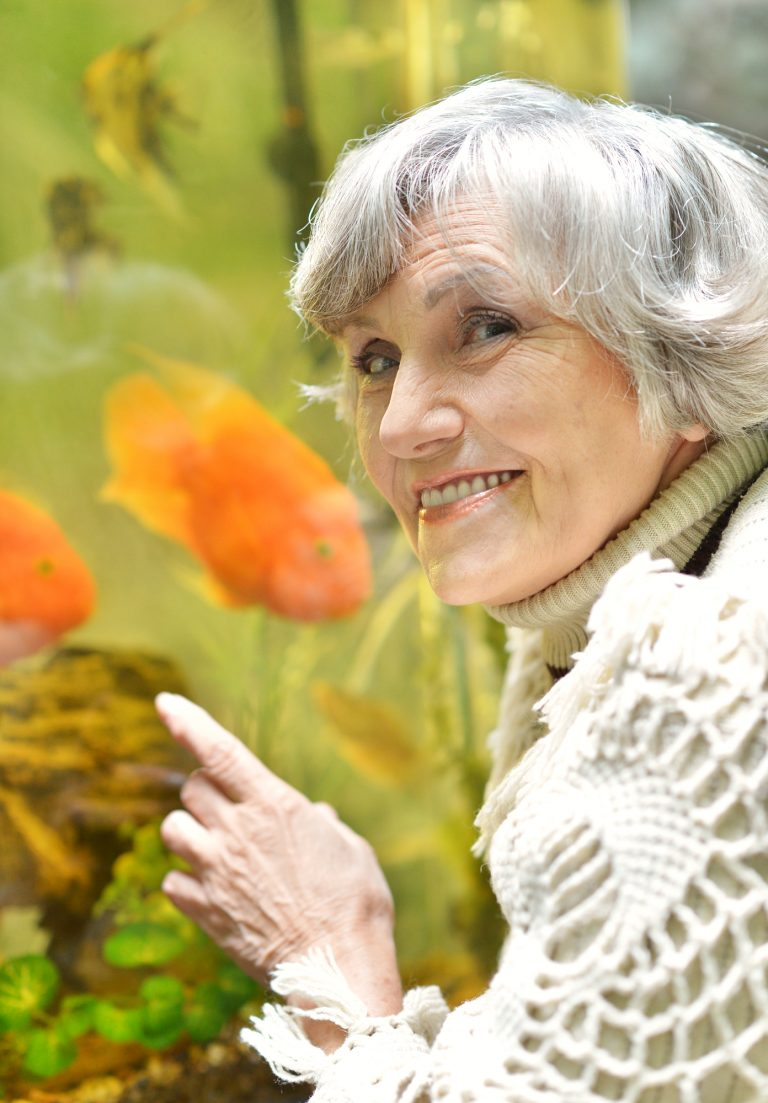Why Fish Make Great Pets for Seniors